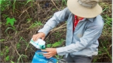 Nỗi đau từ thuốc bảo vệ thực vật