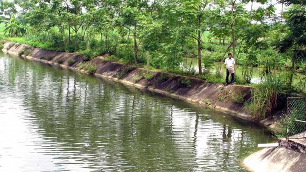 Giá trị, sản xuất, mỗi ha đất nông nghiệp đạt 140 triệu đồng/năm
