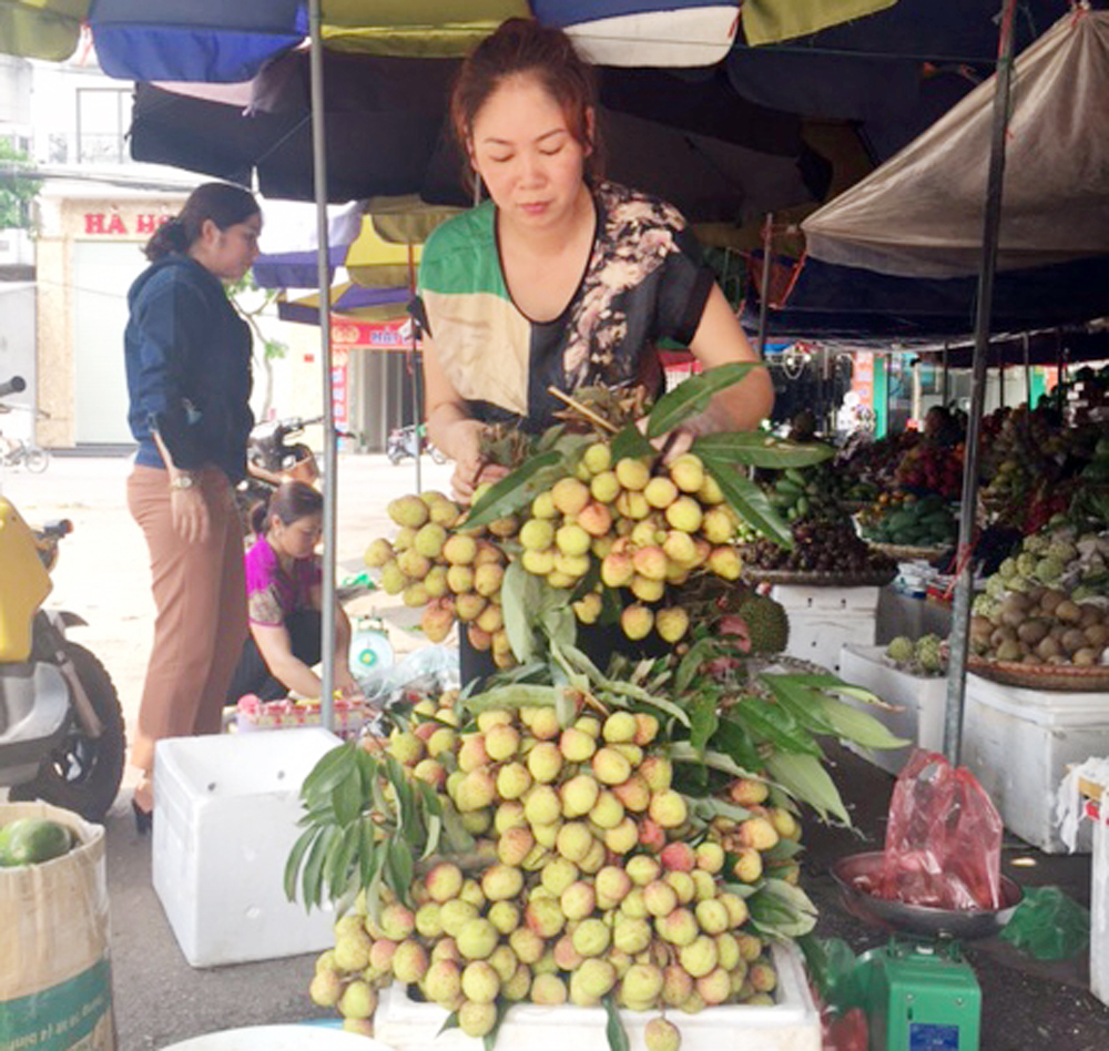 Bắc Giang,  Vải đầu mùa, giá hơn 30-35 nghìn đồng/kg
