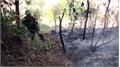 Cháy rừng ở xã Nham Sơn