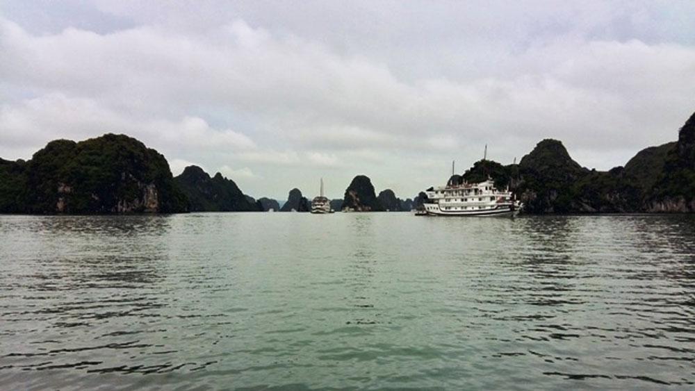 Hải Phòng chỉ đạo làm rõ phản ánh của du khách về chất lượng tàu du lịch