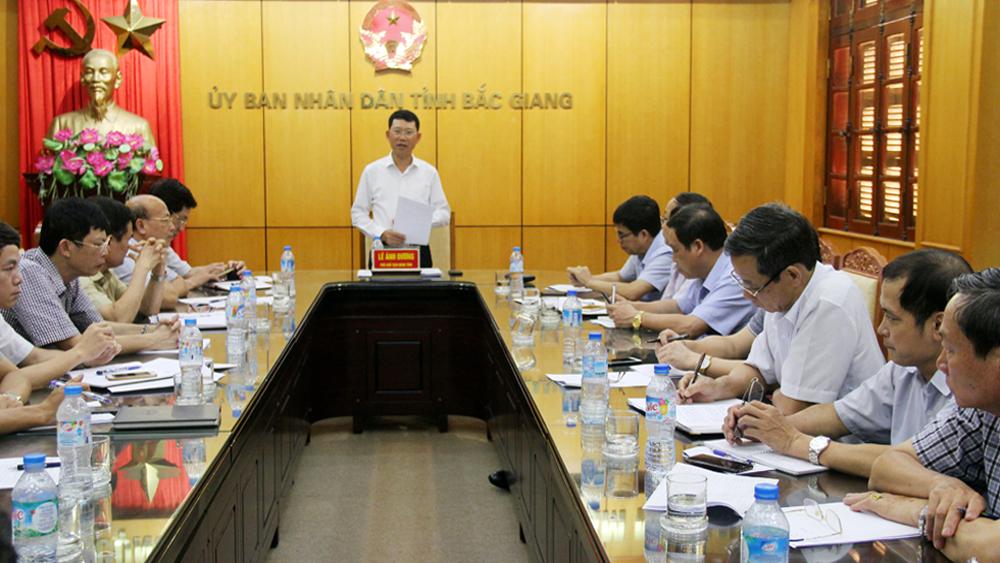 Phó Chủ tịch UBND tỉnh Lê Ánh Dương chỉ đạo tại hội nghị.