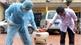 Phòng, chống sốt xuất huyết: Chủ động giám sát, khoanh vùng dập dịch