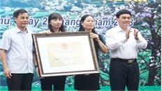 """Khơi nguồn """"dòng văn hóa"""" Thái Mường Thanh"""