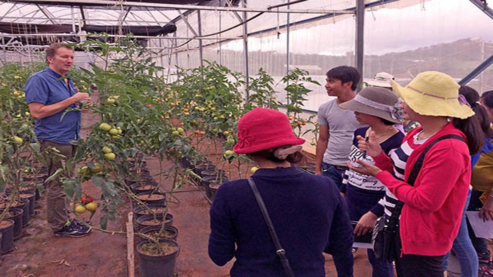 Đào tạo chuyên gia sản xuất nông nghiệp công nghệ cao tại Việt Nam