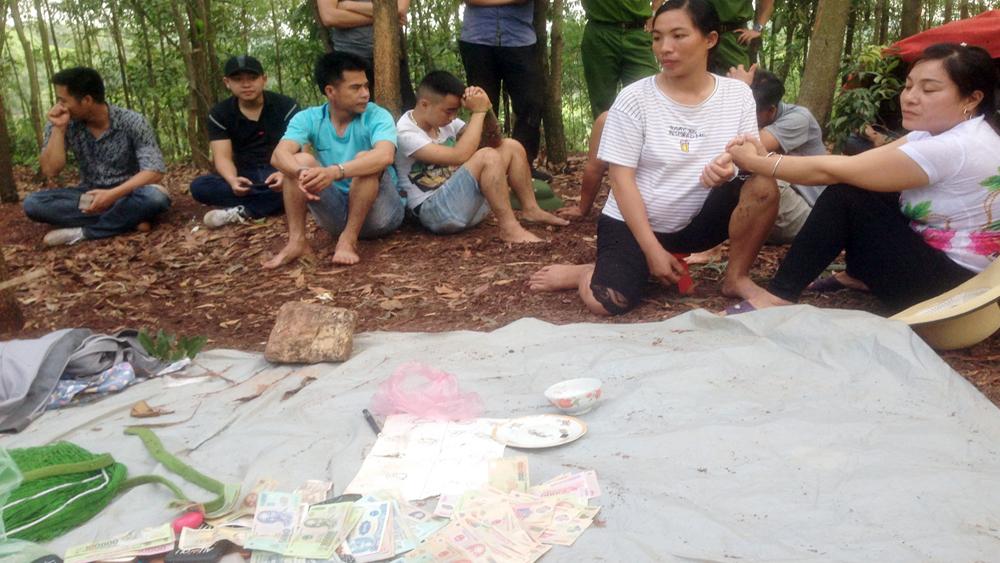 Triệt phá ổ nhóm đánh bạc trong rừng