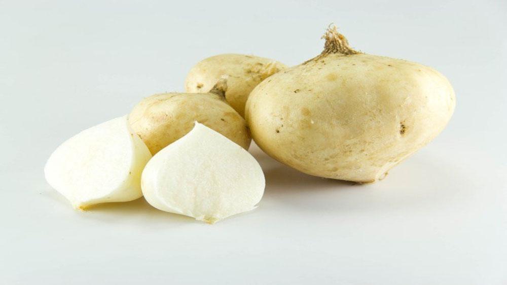 Củ đậu ngừa được hàng loạt bệnh