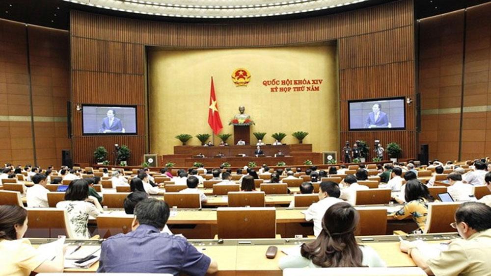 Quốc hội cho ý kiến 2 dự thảo Luật và dự kiến chương trình giám sát