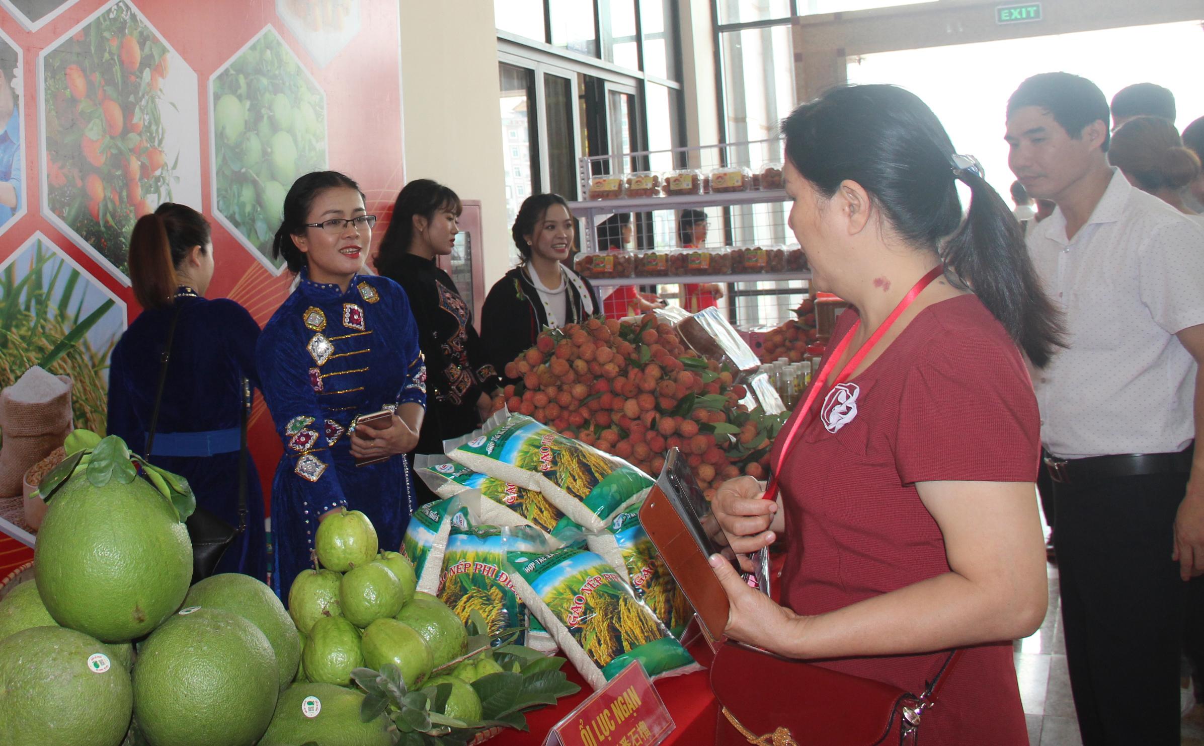 diễn đàn kinh tế, sản xuất, tiêu thụ vải thiều, nông sản đặc trưng
