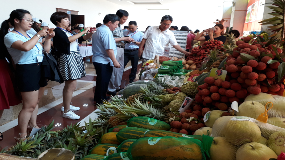Bac Giang province, farm produce, Deputy Prime Minister, Vuong Dinh Hue, agricultural products, fresh lychees, economic forum,  key agricultural products, key export market