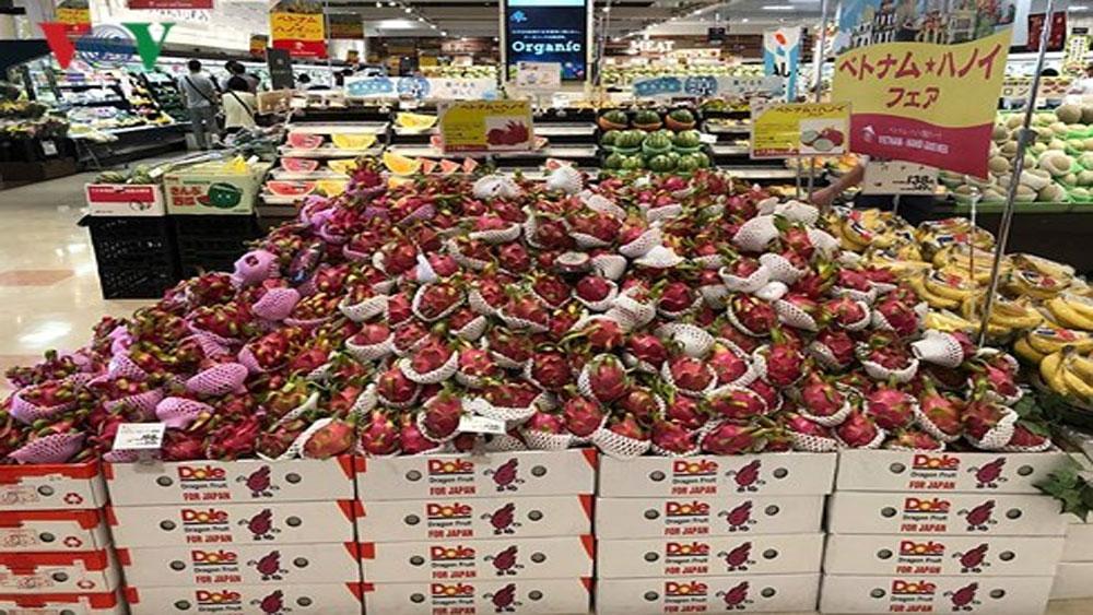 Hàng Việt Nam, tiêu thụ mạnh, hệ thống siêu thị AEON (Nhật Bản)