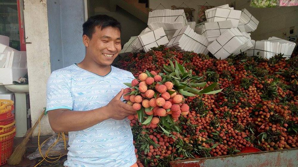 Giá vải thiều tại Lục Ngạn tăng khoảng 7.000 đồng/kg