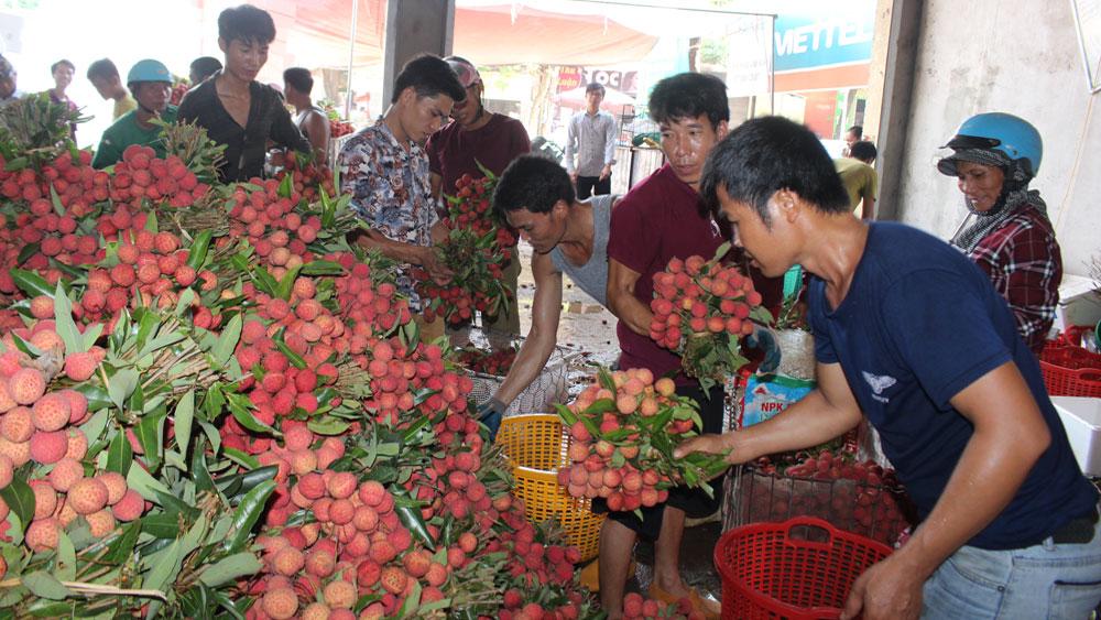Vải thiều trên địa bàn tỉnh Bắc Giang tiêu thụ thuận lợi, bình quân gần 6 nghìn tấn/ngày