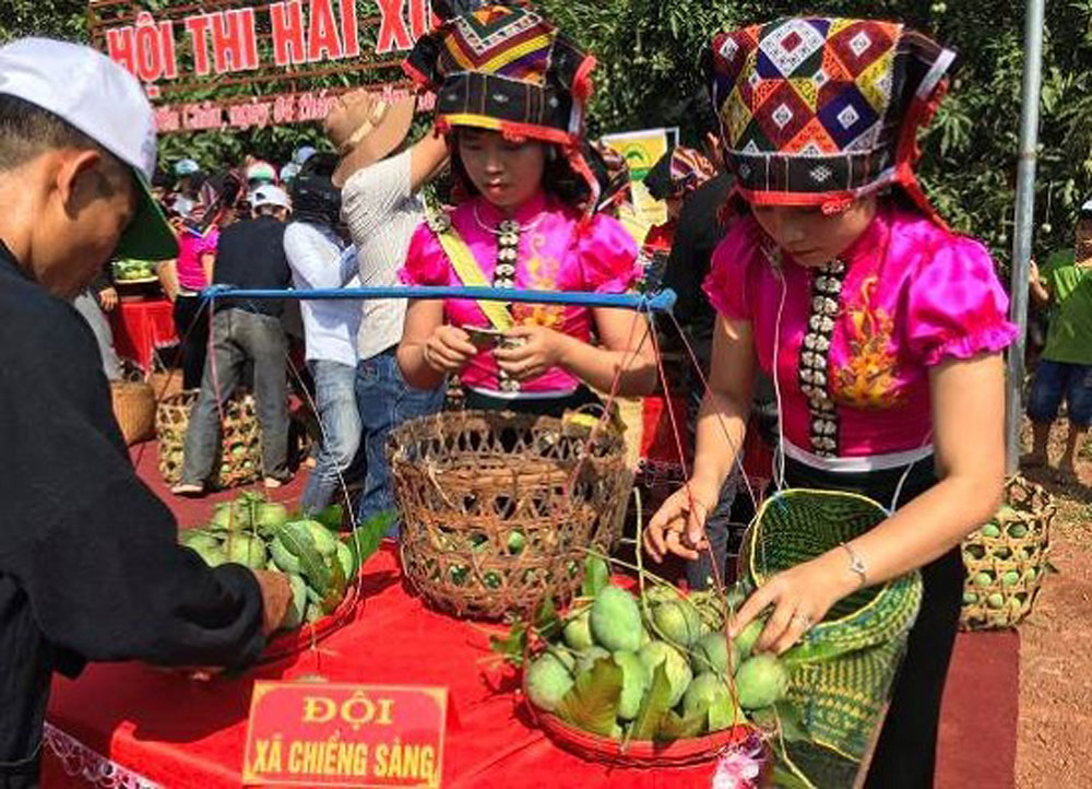 Yen Chau, mango festival, kicks off, two-day festival, mango growers, valuable products, outstanding fruit, production households
