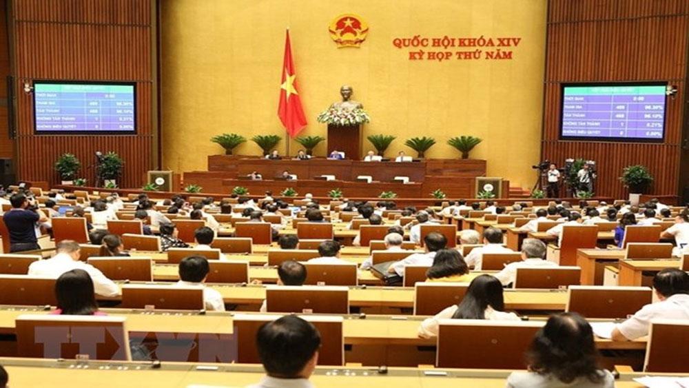 Các đại biểu thảo luận dự thảo Luật Phòng, chống tham nhũng (sửa đổi)