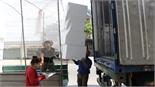 Lục Ngạn: Giá thùng xốp, đá cây giảm mạnh
