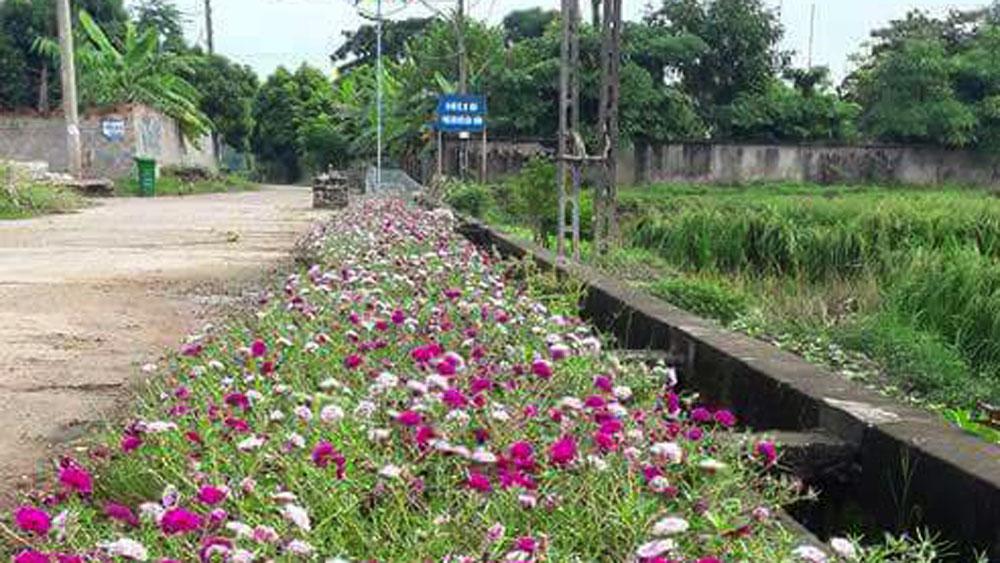 Xã Bích Sơn hỗ trợ các thôn 30 triệu đồng trồng đường hoa