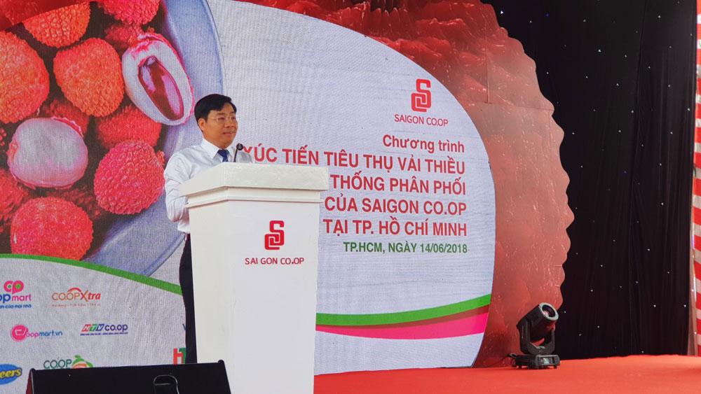 Saigon Co.op sẽ đưa hàng nghìn tấn vải thiều Lục Ngạn vào hệ thống bán lẻ