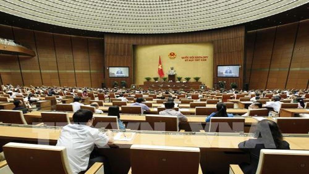 Quốc hội, biểu quyết, thông qua, dự án Luật Chăn nuôi