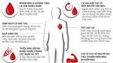 Những điều ít người biết về hoạt động hiến máu