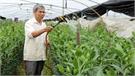 TP Bắc Giang gần 25,5 nghìn lượt hộ nông dân sản xuất kinh doanh giỏi