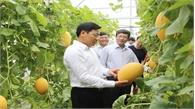 Đại học Nông lâm Bắc Giang trình diễn mô hình nông nghiệp công nghệ cao