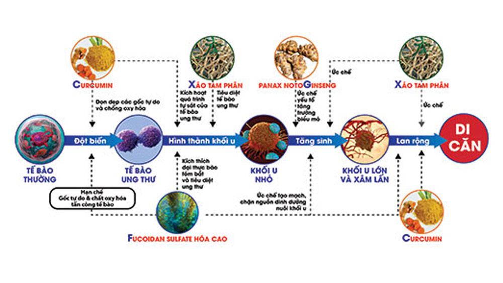 Khoa học Việt ứng dụng nano hỗ trợ điều trị ung thư