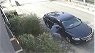 Trộm điện thoại trong ô tô