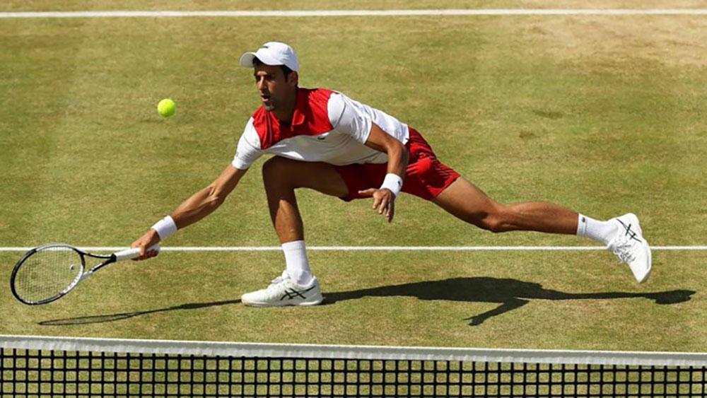 Novak Djokovic, Cilic, Roger Federer, Borna Coric, Rafael Nadal, Halle, Queen's Club