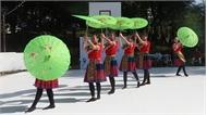 Trình diễn nghệ thuật dân tộc Việt Nam tại lễ hội Pháp