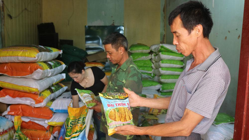 Cung ứng kịp thời vật tư, thuốc bảo vệ thực vật cho gieo cấy lúa, rau màu
