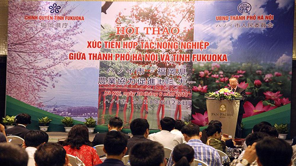 Hanoi, Fukuoka promote agricultural cooperation