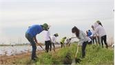 93% gia đình ký cam kết bảo vệ môi trường