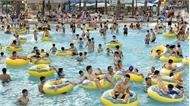 Vì sao nhiều người mắc bệnh viêm da khi tắm ở bể bơi?