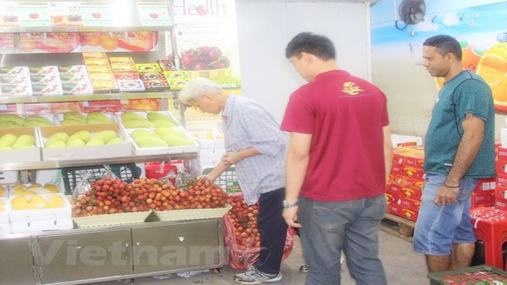 Vietnamese lychees warmly welcomed in Malaysia