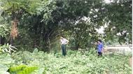 UBND xã Nội Hoàng (Yên Dũng): Giao đất trái luật, phát sinh tranh chấp