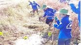 Tổ chức nhiều hoạt động tình nguyện tại xã Tân Trung