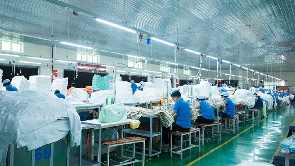 Vietnam textile firm bets on eco-friendly products