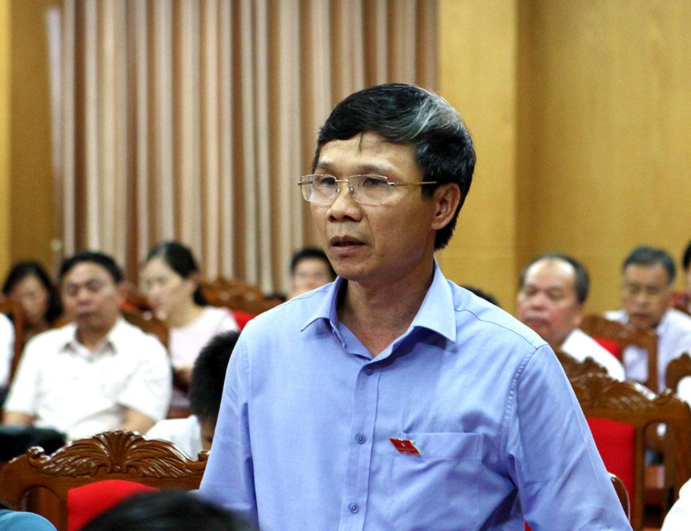 Đại biểu Nguyễn Văn Thi đề xuất việc nâng cao tính bền vững trong thu hút đầu tư.