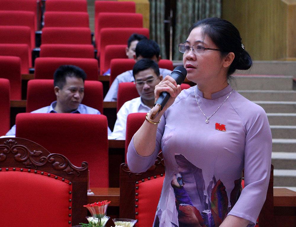 Bà Leo Thị Lịch, Chủ tịch Hội Nông dân tỉnh kiến nghị giải pháp bảo đảm an ninh nông thôn.