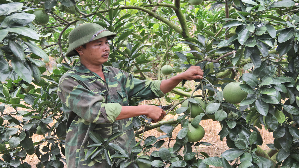 Nghị quyết Đại hội Đảng bộ huyện Lục Ngạn, Bắc Giang, tỷ lệ hộ nghèo