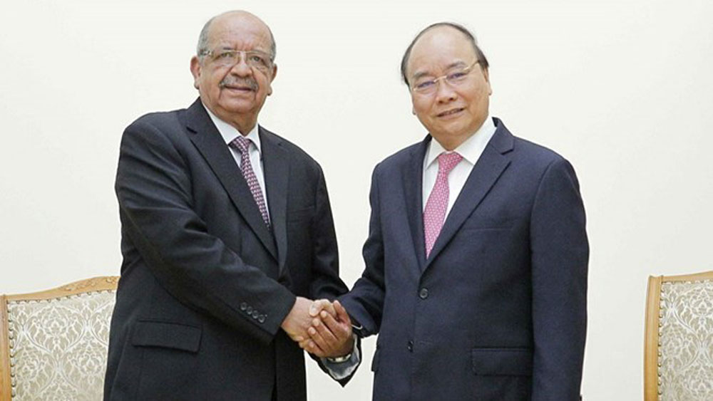 Vietnam looks to forge ties with Algeria in various fields: PM