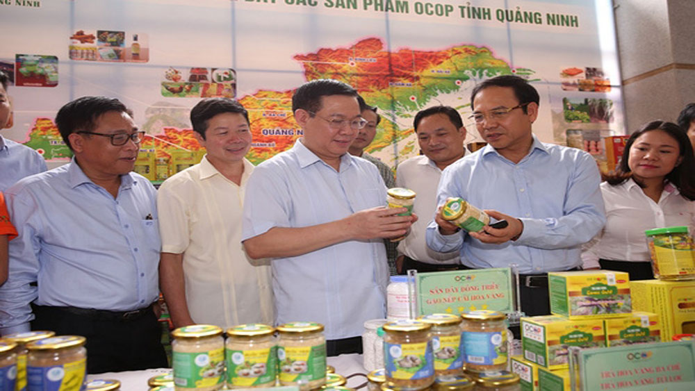 Deputy PM calls for resources for 'One Commune, One Product' programme