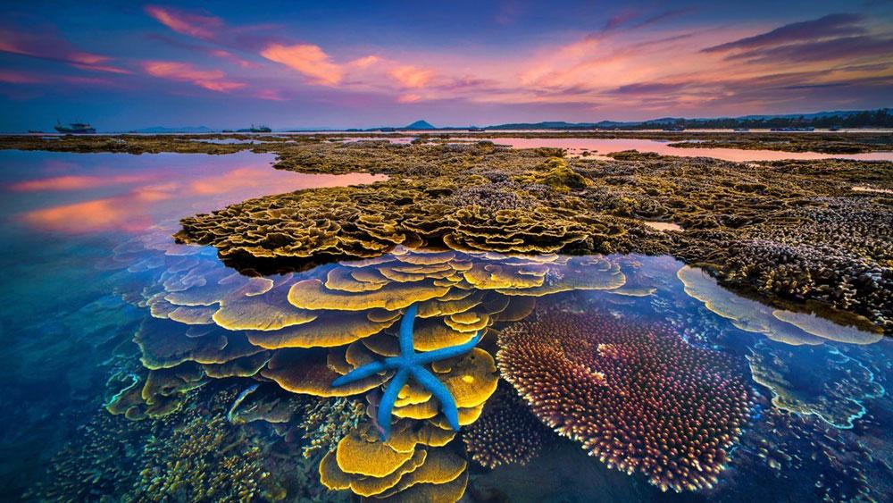 Impressive photos at national tourism photo contest