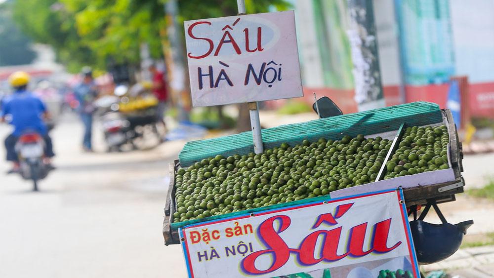 Hanoi, cool taste, hot weather, Vietnam's capital city, classic natural beverages, branded soft drinks, plenty of fluid, summer fruit drinks