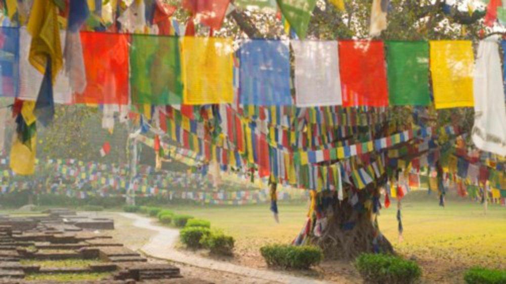 """""""Suốt nhiều thập kỷ qua, thành phố Lumbini chỉ thoáng qua trong mắt du khách trong hành trình từ Ấn Độ tới Nepal. Nhưng ít người biết rằng nơi đây là cái nôi của đạo Phật"""", Lonely Planet viết. """"Ngày nay, Lumbini đang trên đà trở thành điểm du lịch hấp dẫn và một sân bay quốc tế sắp hoàn thành ở đây""""."""