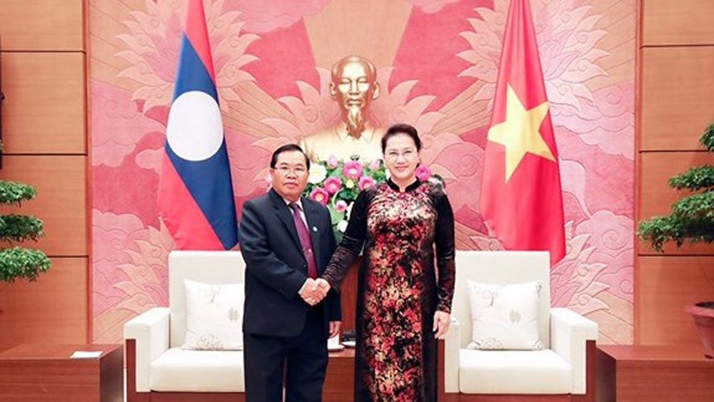 Vietnam's top legislator hosts Lao NA Vice Chairman