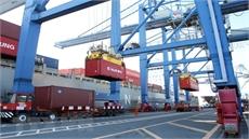 Kiểm điểm trách nhiệm người đứng đầu trong vụ 213 container 'mất tích'
