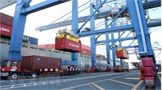 """Kiểm điểm trách nhiệm người đứng đầu trong vụ 213 container """"mất tích"""""""