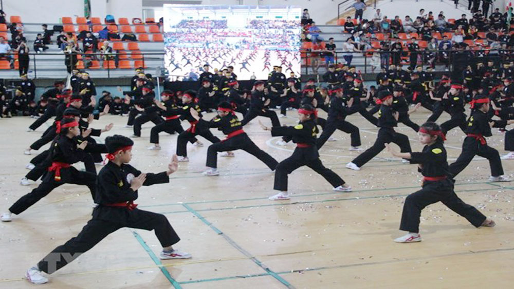 HCM City, fifth festival, int'l martial arts, martial artists, Traditional Martial Arts Festival, opening ceremony, duel and individual fights